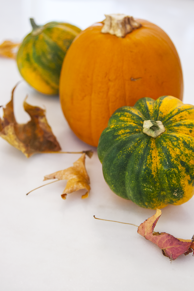 Easy, Low Cost, Minimalist Fall Centerpieces with Maple Leaves, Acorn Squash, and Sugar Pumpkin